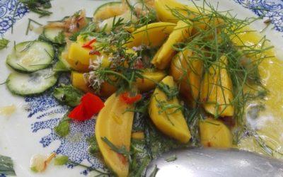 Les recettes de légumes lacto-fermentés de Pervenche