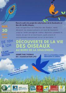 Découverte des OISEAUX au bord de la Soulondre @ Passerelle de la Soulondre - Bouquerie
