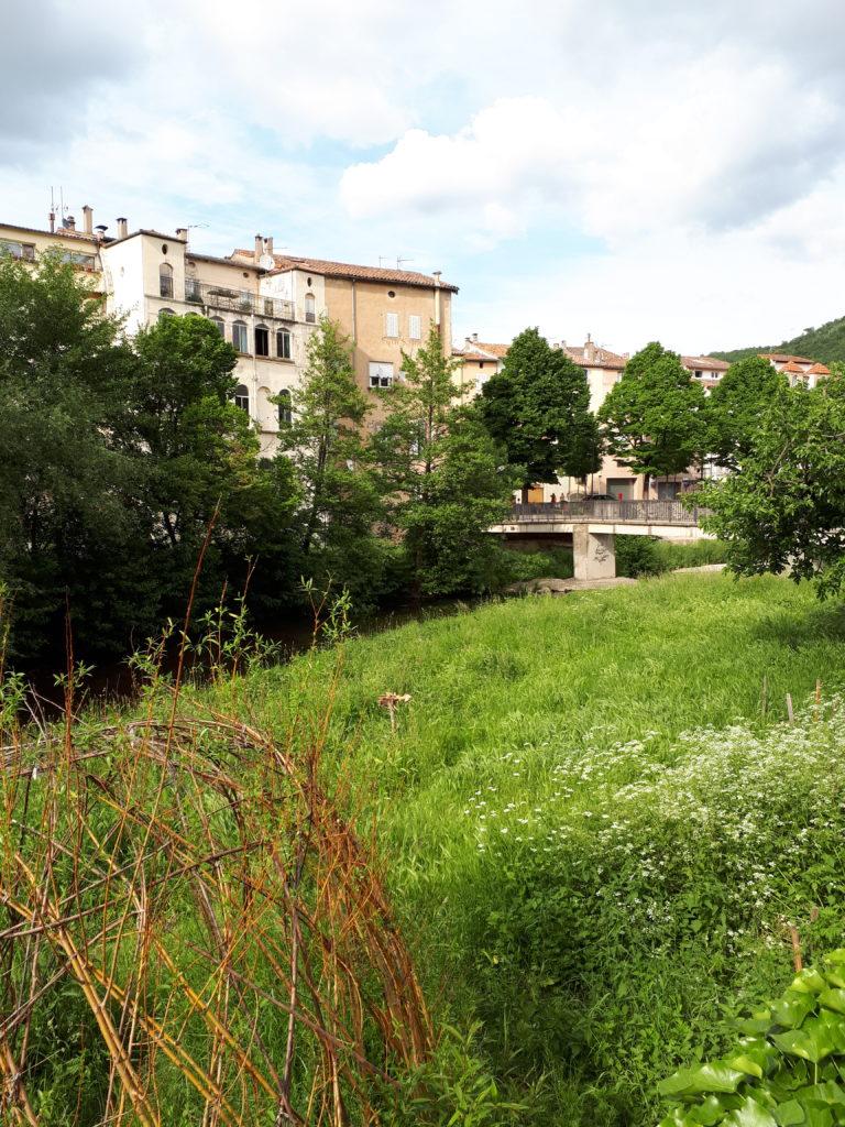 plantes rivière lodève