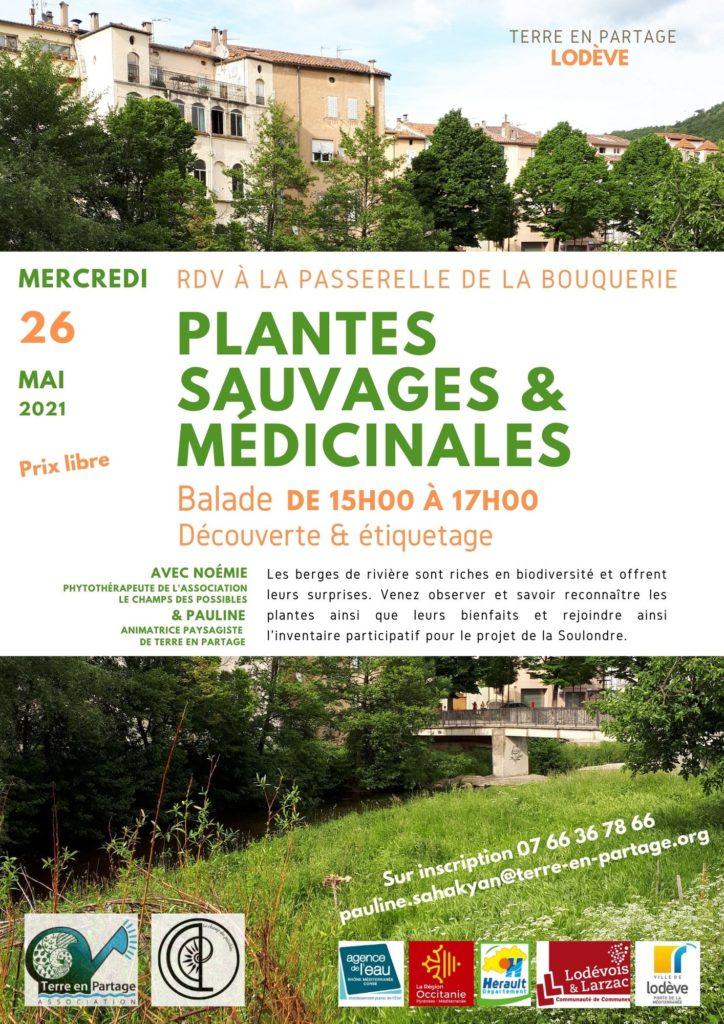 26 mai : Plantes médicinales avec le Champ Des Possibles @ Passerelle de la Soulondre - Bouquerie